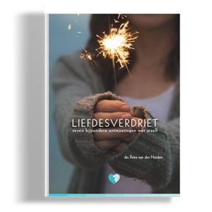 productafbeelding-liefdesverdriet-boek